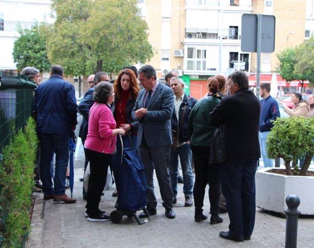 Sevilla.- El Ayuntamiento asume el mantenimiento del arbolado de La Carrasca y aprueba un plan para su conservación