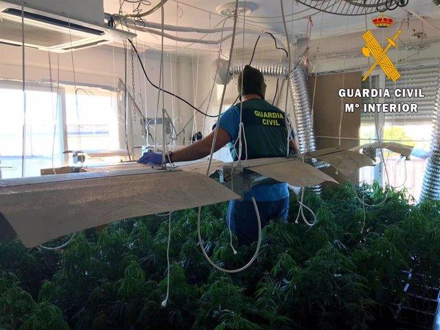 Almería.- Sucesos.- Un detenido acusado de plantar marihuana en su vivienda de Roquetas donde vivía con su hijo menor