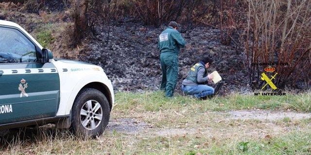 Sucesos.- Seis detenidos por provocar incendios forestales en Asturias en febrero y marzo