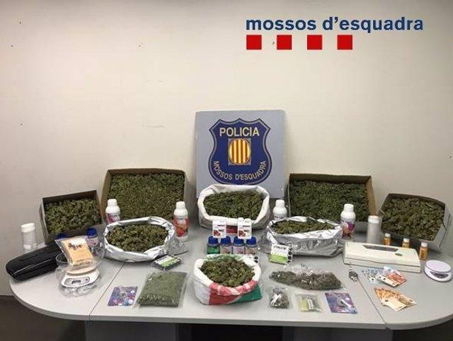 Successos.- Desarticulat un grup criminal que traficava amb marihuana a Corbera (Barcelona)