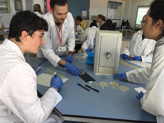 Estudiantes de siete colegios y de la CEU UCH hallan 61 microorganismos con capacidad de antibiosis