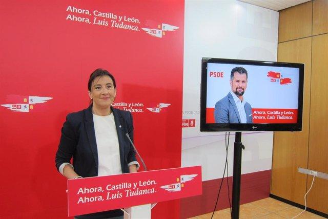 """26M.- PSOE Advierte De Que Cyl Puede Ir A Peor Con La """"Derecha Corrupta Y Extrema Derecha"""" Y Llama Al Cambio """"Ahora"""""""