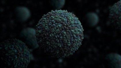 Un fármaco de la artritis reumatoide consigue disminuir las muertes y defectos de nacimiento por virus Zika