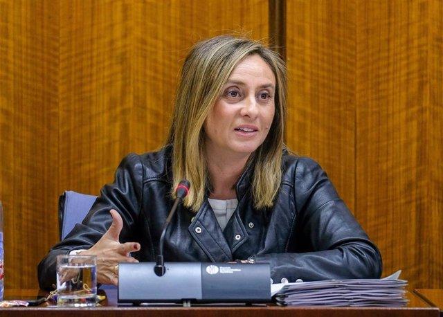 Málaga.- Junta dice que trabaja de forma coordinada con el Ayuntamiento sobre el metro y valora medidas de acceso al PTA