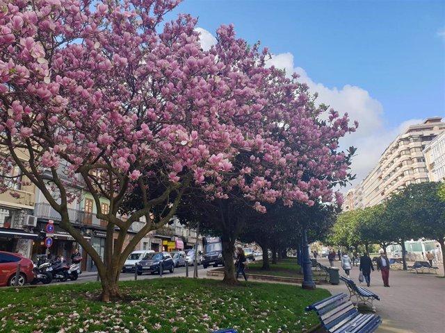 Abril fue ligeramente cálido y seco en Cantabria