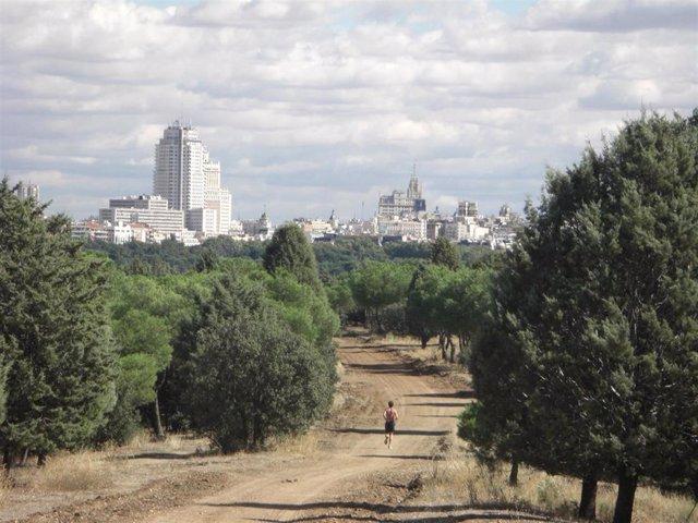 Casa de Campo de Madrid
