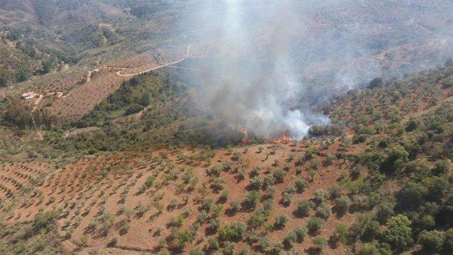 Málaga.- Sucesos.- Declarado un incendio en una finca agrícola de Guaro