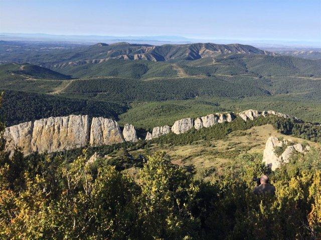 El turismo se consolida como alternativa económica en la Comarca de Cinco Villas