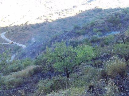 Un incendio agrícola quema 1,8 hectáreas de pastizal en un terreno abandonado de Málaga