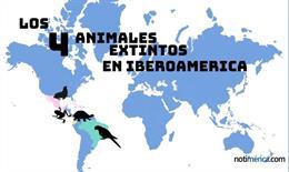 Los 4 animales que han desaparecido en Iberoamérica duran los últimos 15 años