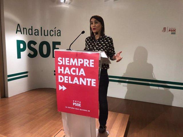 """Granada.- 26M.- El PSOE plantea un programa con 450 iniciativas para pueblos y ciudades """"dignas"""" para vivir"""
