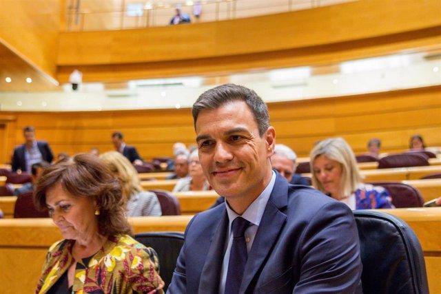 Pedro Sánchez y Carmen Calvo en el Senado