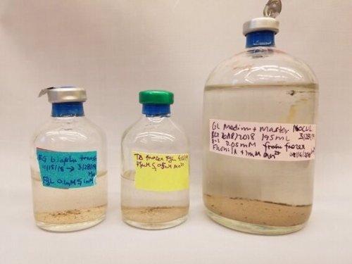 Cómo recrear antiguos minerales en un laboratorio