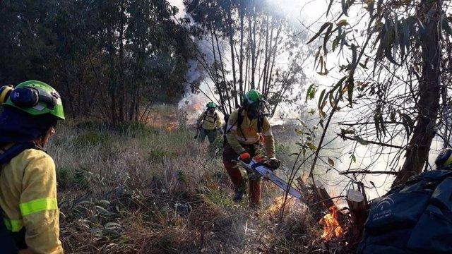 Huelva.- Sucesos.- Estabilizan un incendio forestal declarado este sábado en Almonte que ha afectado a tres hectáreas