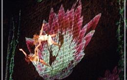 El XV Circuito de Danza presenta   en la Umore Azoka de Leioa la coreografía 'Sacred'