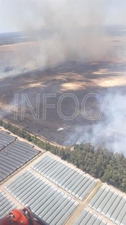 Huelva.-Sucesos.-Incendio del Berrocal afecta a cuatro hectáreas y continúa la extinción del de Almonte, cerca de Doñana