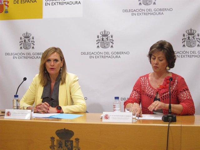 AV.- 26M.- Más de 874.000 personas podrán votar en Extremadura en las elecciones municipales, autonómicas y europeas