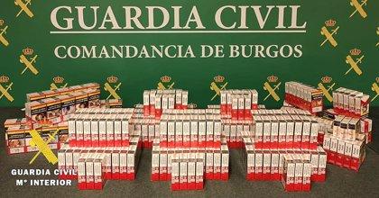 Incautadas en un estanco de la provincia de Burgos 363 cajetillas de tabaco ilegal