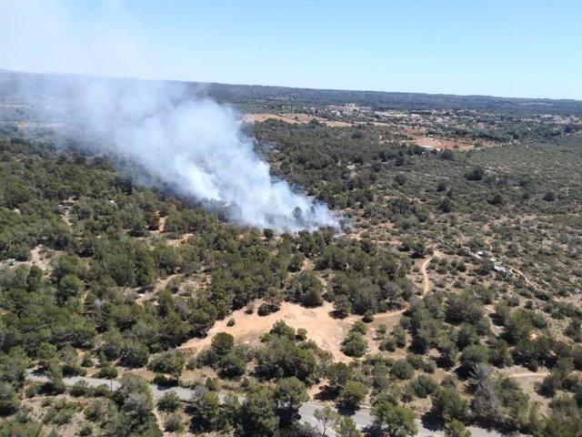 Successos.- Confirmat un incendi forestal a Son Verí