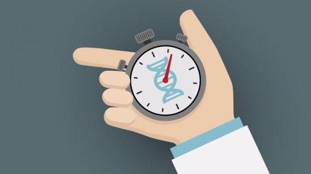 El ADN de los MIR envejece seis veces más rápido de lo normal en el primer año de residencia