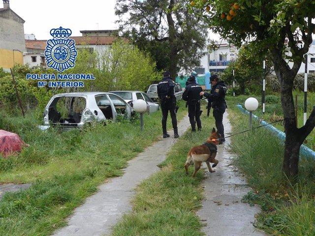 Once detenidos, uno en Torrelavega, en una operación contra una red de inmigración ilegal a través de pateras