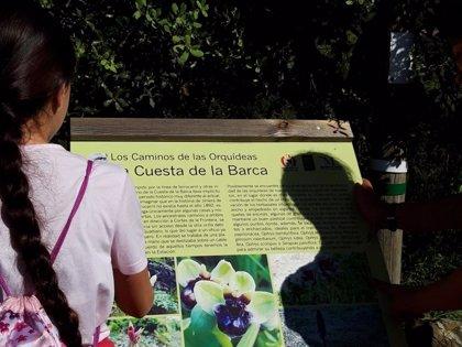 La Diputación de Málaga edita una guía informativa sobre los 45 tipos de orquídeas que pueden verse en la provincia