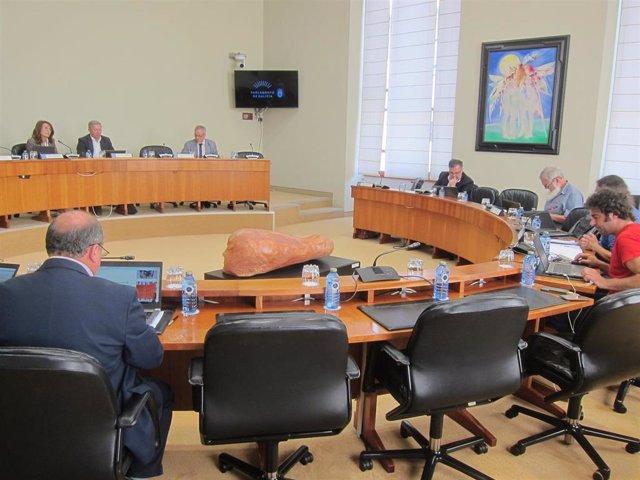 Rural.- El PP rechaza una medida que busca acotar terrenos máximos de eucaliptos para evitar incendios como el de Dodro