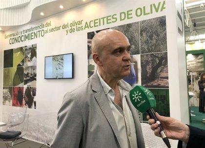 Un estudio de la UJA revela un compuesto del aceite de oliva virgen que ejerce como cicatrizante de heridas