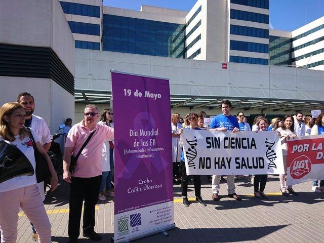 """Investigadores del IIS La Fe cumplen tres meses de protestas para denunciar su """"agónica"""" situación de temporalidad"""