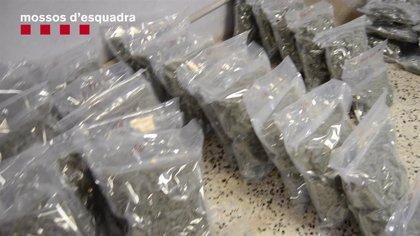 Cae un grupo dedicado a la compraventa de droga en Lloret de Mar (Girona)