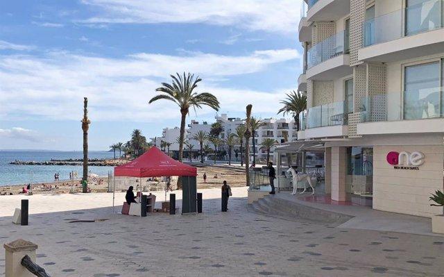 PxE critica que personal del Ayuntamiento de Ibiza haga campaña a favor del PSOE en horario laboral