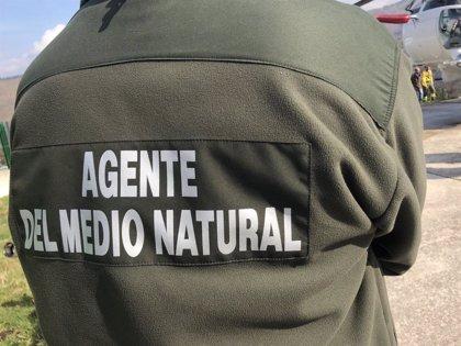 La Junta retira la instrucción sobre guardias de incendios para agentes del Medio Natural a petición de los sindicatos