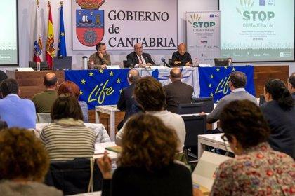 """Cantabria logrará ser """"punto de referencia"""" en la lucha contra el plumero en el Arco Atlántico"""