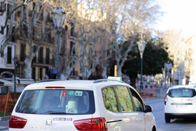 AMP.- El 48,79% dels taxistes de Balears estan en contra que s'implanti un uniforme de manera obligatòria