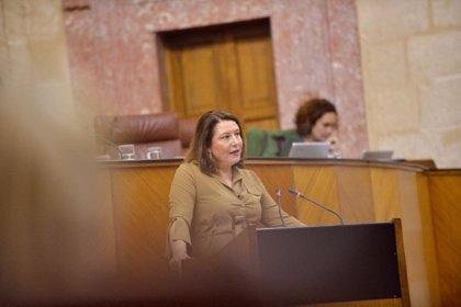 """Crespo reprocha el """"alarmismo"""" sobre el Infoca al PSOE-A, que le pide que """"no desmantele"""" este dispositivo"""