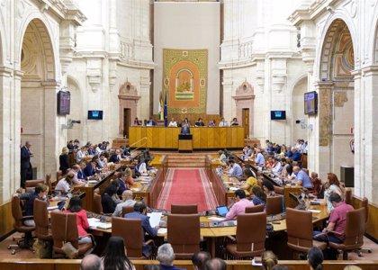 El Parlamento aprueba una declaración institucional contra los ataques a las escuelas en conflictos armados