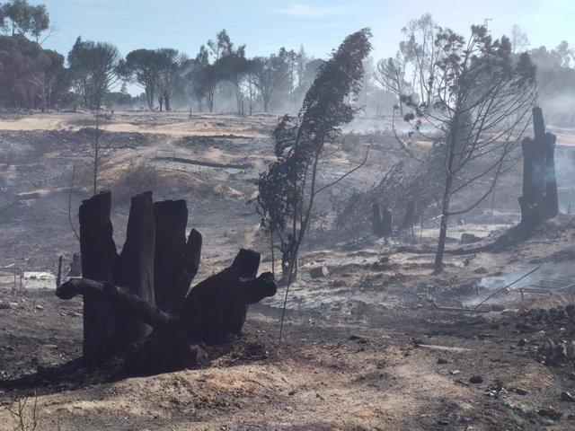 Huelva.- Cáritas acompaña a los afectados por el incendio de este jueves en el asentamiento de Palos de la Frontera