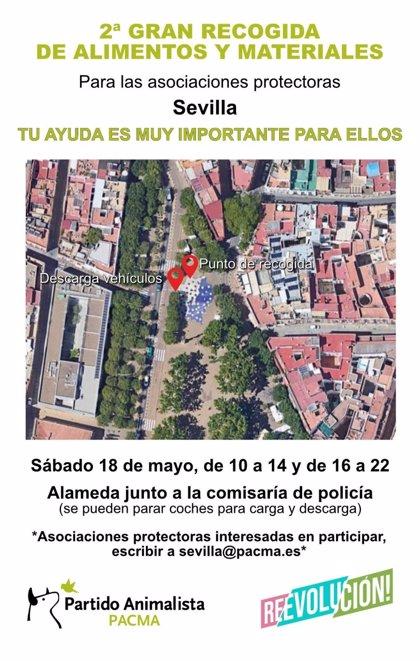 Pacma recoge el sábado en Sevilla alimentos y materiales para animales