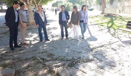 26M.- Isern dice que si es elegido alcalde renovará el suelo del Parc de la Mar de Palma