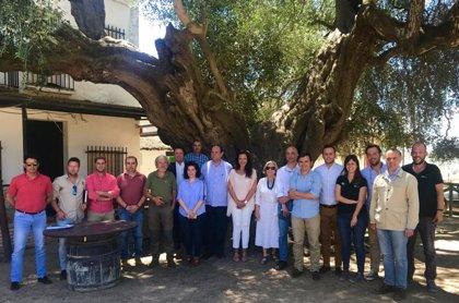 """Empresarios de la comarca de Doñana, en Huelva, apuestan por """"convertir el turismo de naturaleza"""" en referente"""
