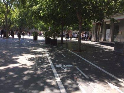 Cort finaliza las tareas de mejora del tramo de carril bici de Plaza España