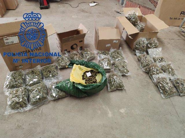 Suc.- Intervienen nueve kilos de cogollos de marihuana, la mayor cantidad para su venta en León