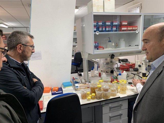 26M-M.- Gijón.- Ciudadanos Propone Crear Un Cluster Vinculado Al Mar Para Potenciar Industrias Y Actividades Marítimas