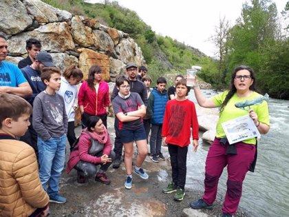 Liberados 100 ejemplares de cavilat en el río Garona a su paso por Es Bordes (Lleida)