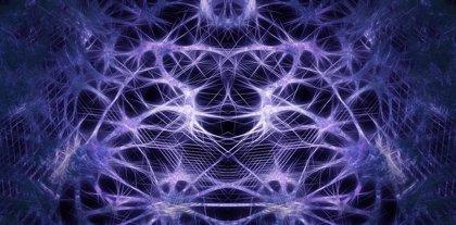 La corteza insular advierte a otras partes del cerebro sobre posibles eventos dolorosos, según un estudio