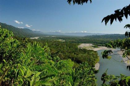 Vizcarra reitera su compromiso por combatir contra la minería ilegal en el Amazonas