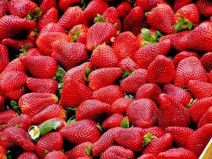 20 de mayo: Día Internacional de las Fresas, ¿qué propiedades tiene esta fruta para la salud?