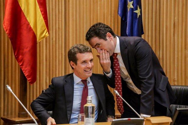 El presidente nacional del Partido Popular, Pablo Casado, preside la reunión de los grupos parlamentarios del Congreso y del Senado, en la Cámara baja