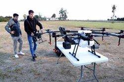 Pagesos i caçadors de Poble Nou del Delta comencen a utilitzar drones per espantar els flamencs dels arrossars (ACN)