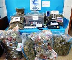 Detingudes onze persones per envasar i comercialitzar marihuana des d'una nau de Vinaròs (ACN)